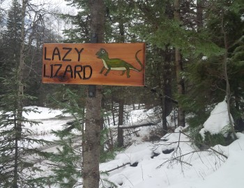 The Bridges of Lazy Lizard