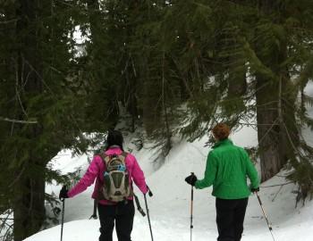 High Avi Hazard – Snowshoe Safe Terrain