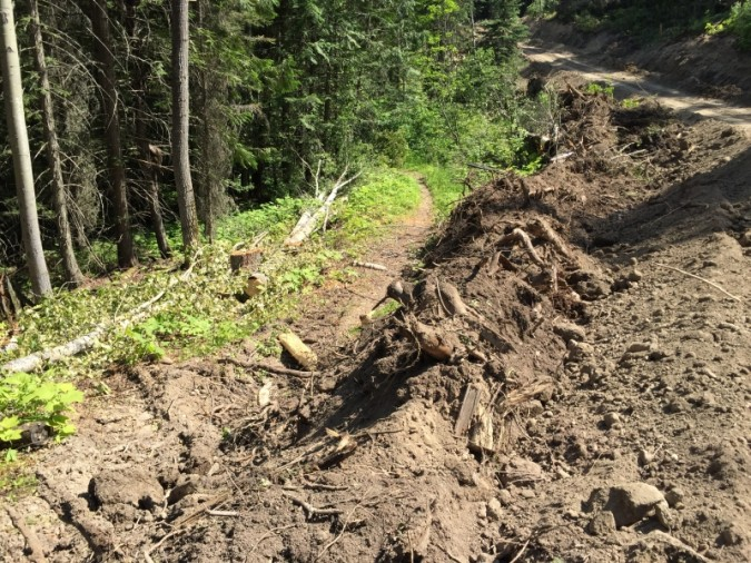 Jemi Fibre Logging along Coal Discovery Trail