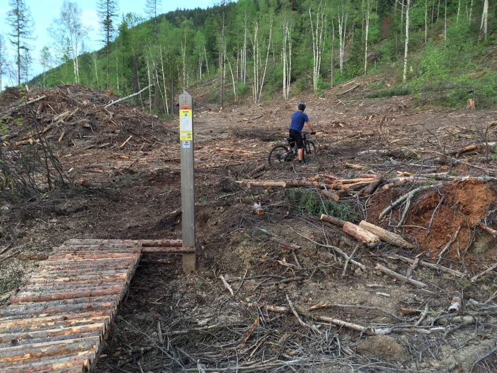 Kush logging
