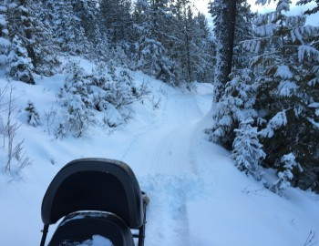 2016 Winter Grooming on Montane Trails