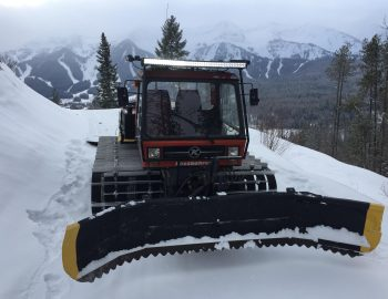 Snow Cat Grooming Montane