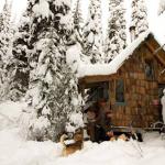 Harvey Pass Warming Hut Draft Plans