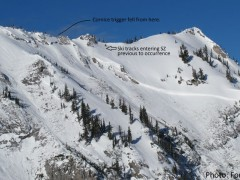 Tunnel Creek Avalanche Report Feb 8 2012