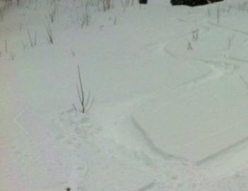 Early Season Snow Hazards